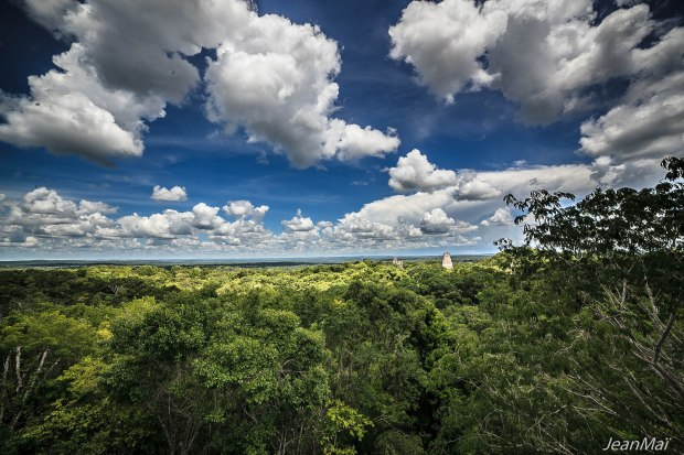 Tikal50 06092017