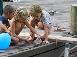Pêche sur les pontons
