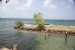 Un îlot en construction