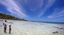 L'île aux oiseaux (Tikehau)